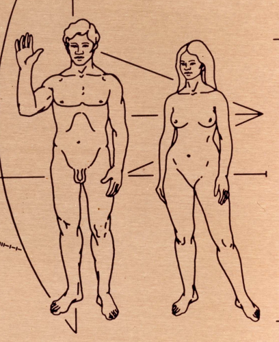Pioneer 1 plaque man and woman